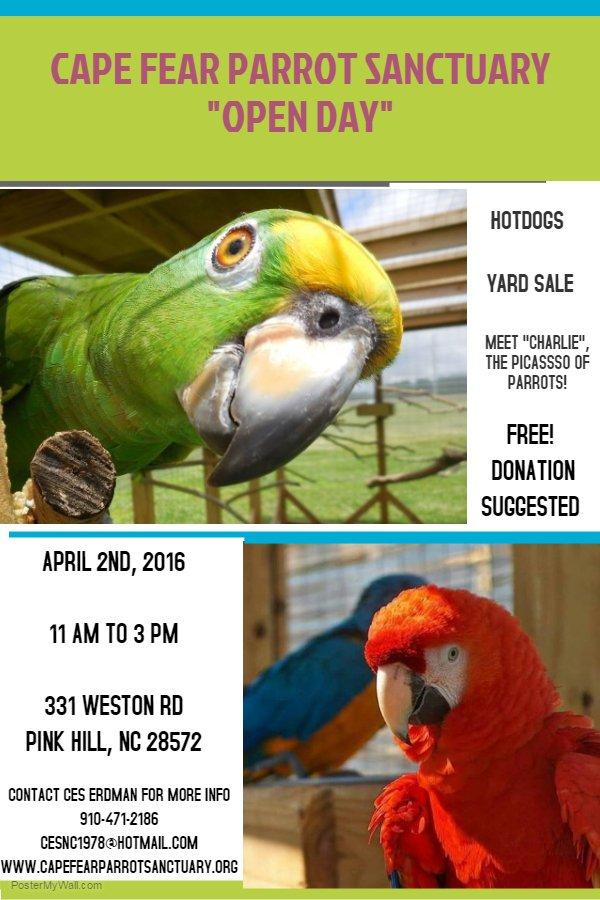 Cape Fear Parrot (@CapeFearParrot) | Twitter