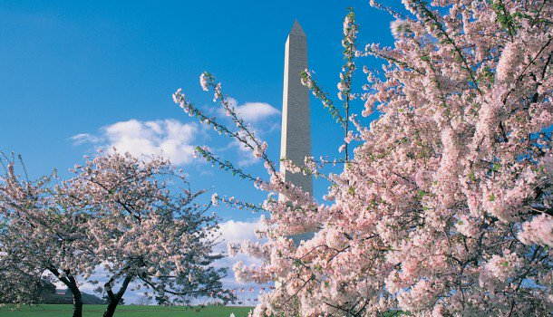 Spring is an awesome time to visit the District. Start planning your trip!