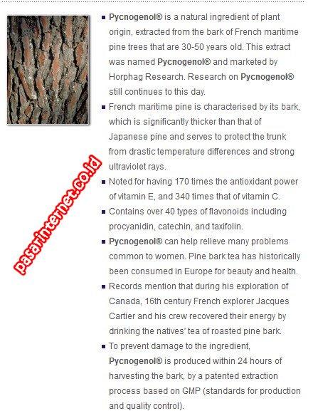 kandungan Pycnogenol® dalam mirtoplus