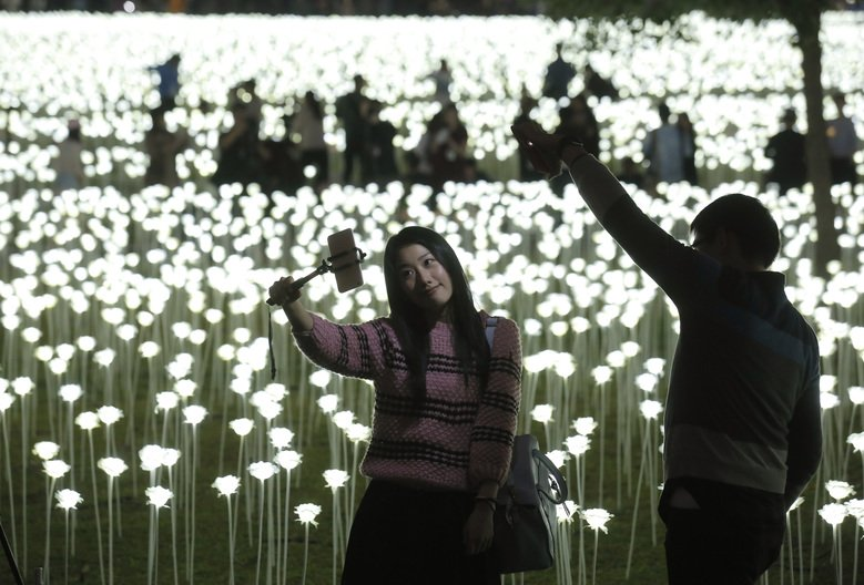 Hong Kong celebrates Valentine's Day with 25,000 waterproof LED roses