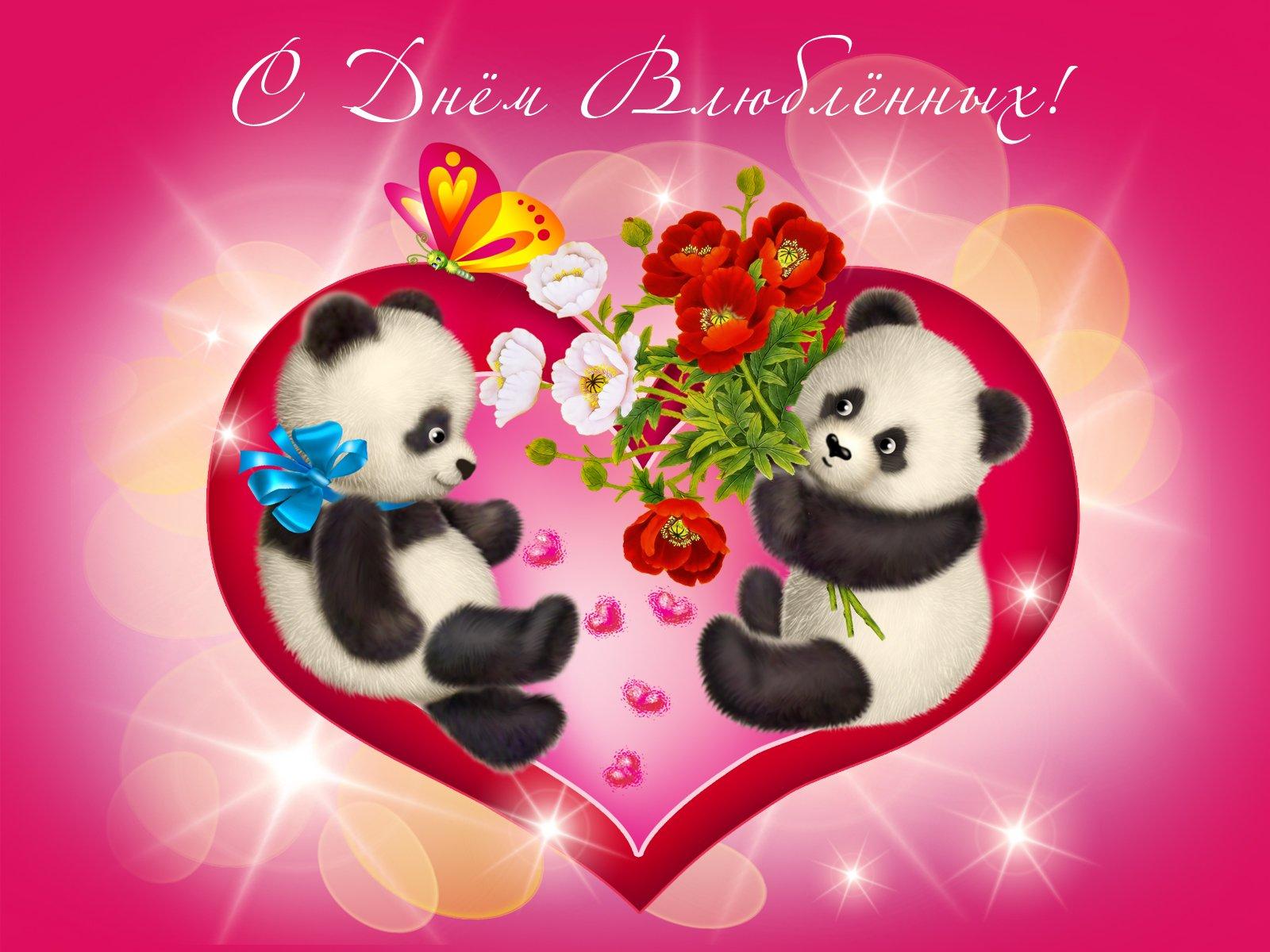 Новому, открытка поздравление с днем влюбленных