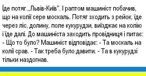 Блокада российских грузовиков в Украине не нарушает международные договора, - Пивоварский - Цензор.НЕТ 4914
