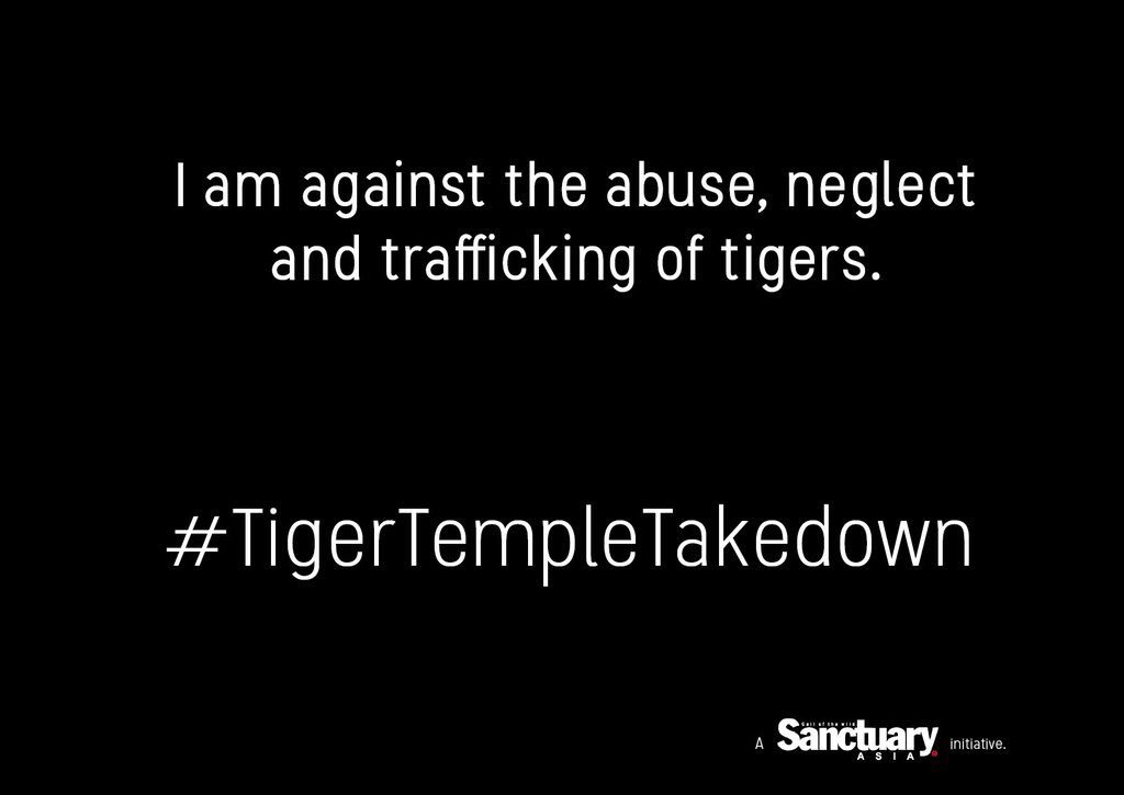 #tigertempletakedown https://t.co/94P6SuZSbL