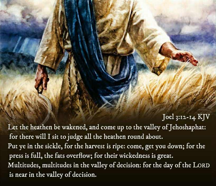 """Bible Verses KJV on Twitter: """"Joel 3:14 KJV Multitudes, multitudes in the valley of decision: for the day of the LORD is near in the  valley of... https://t.co/nVi3kTB7U1"""""""
