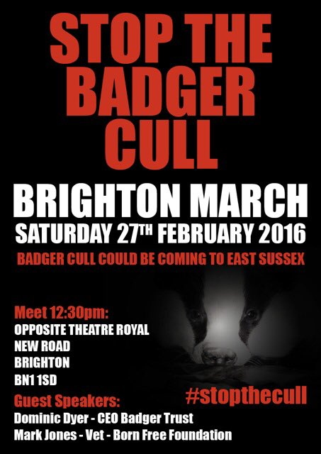 Stop killing badgers