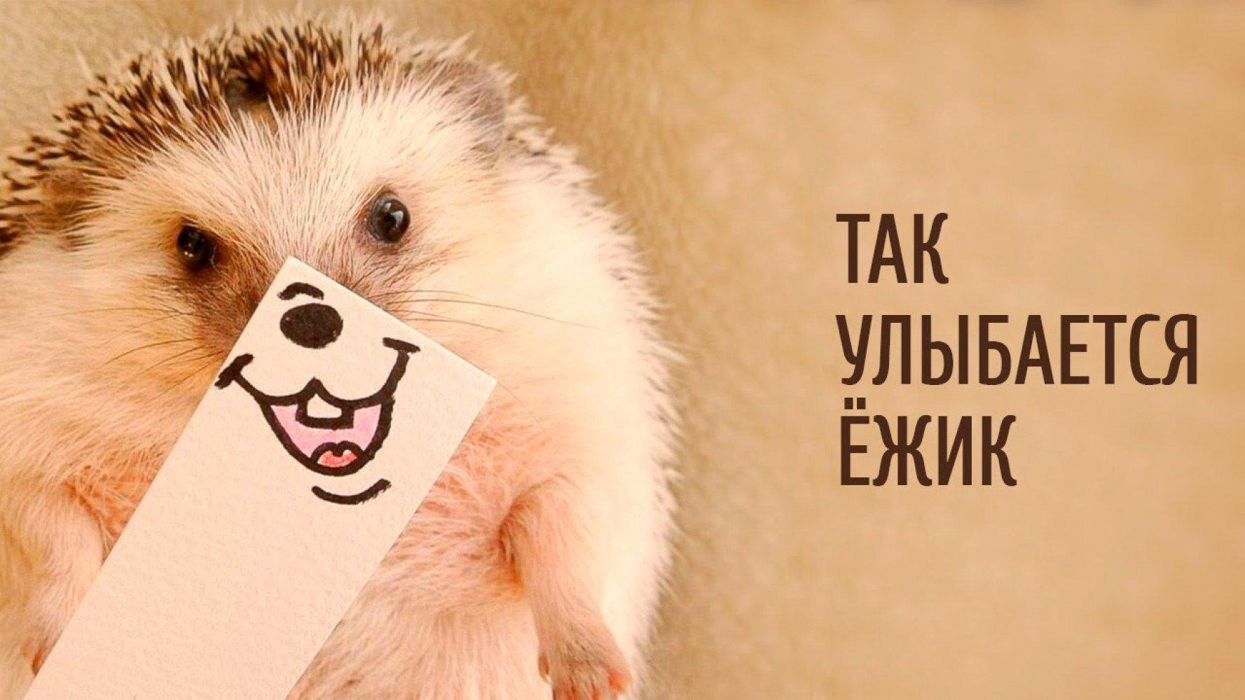 Днем рождения, картинки с надписью улыбнись милый