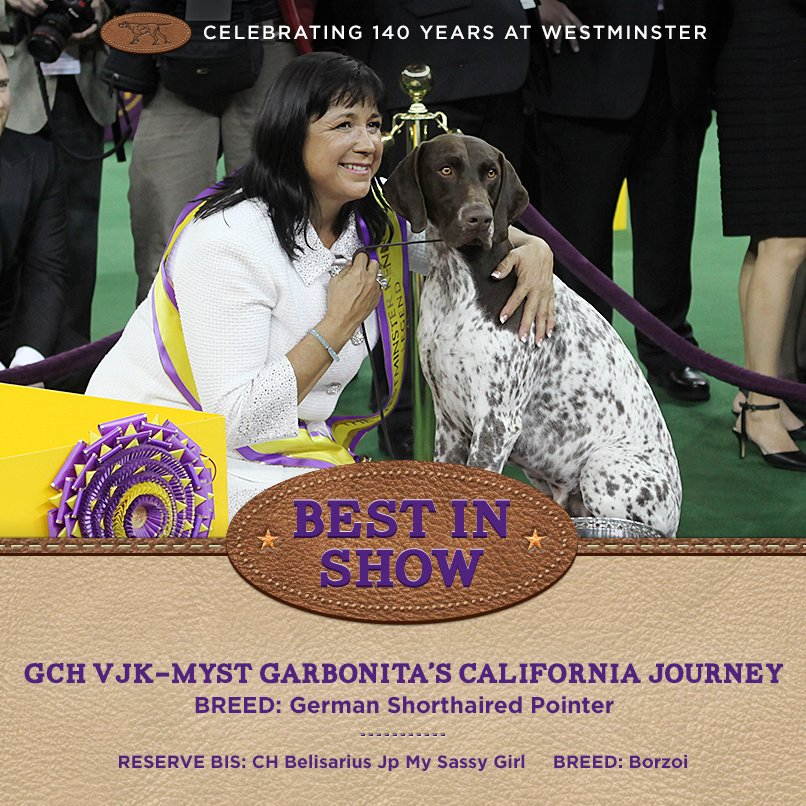 Best in 140th Westminster Kennel Club Dog Show - Winners of the 140th Westminster Kennel Club Dog Show in New York, 15 - 16 February 2016 (BIS)