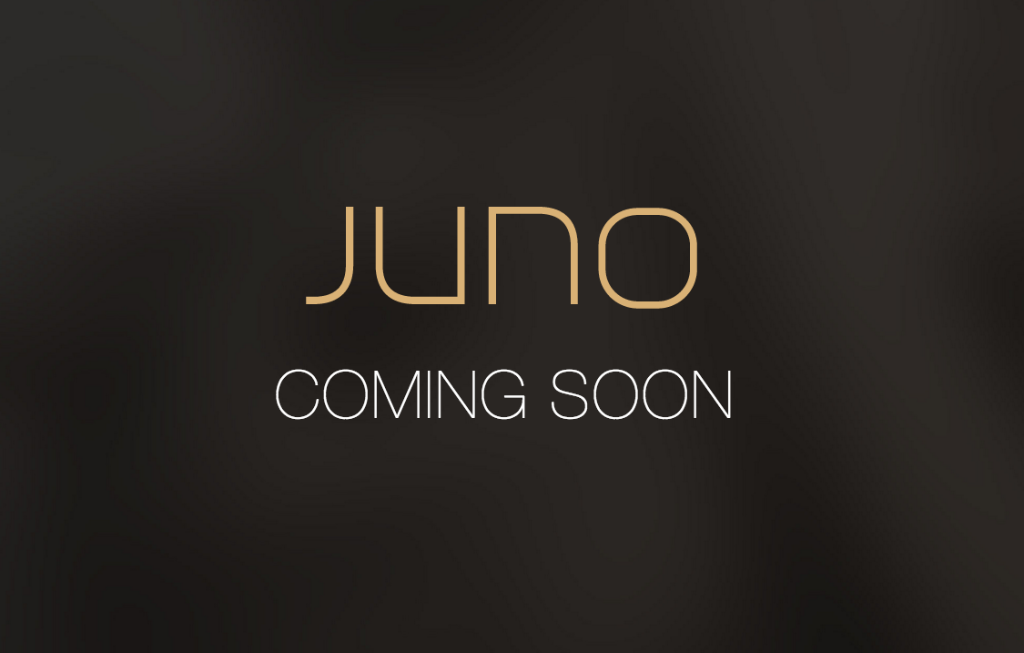Talmon Marco--former cofounder and CEO of Viber--is behind new Uber competitor, Juno: