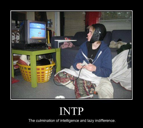 Entp and intp