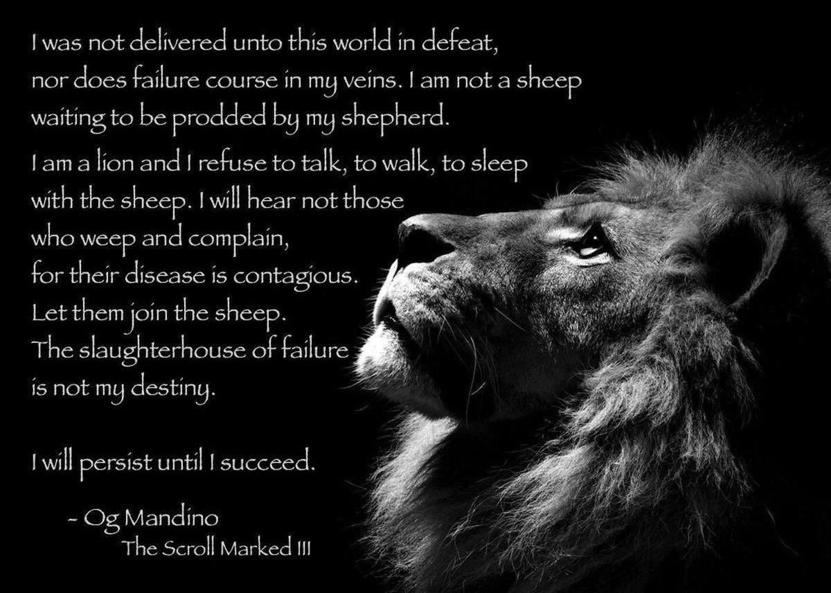 i will persist until i succeed essay