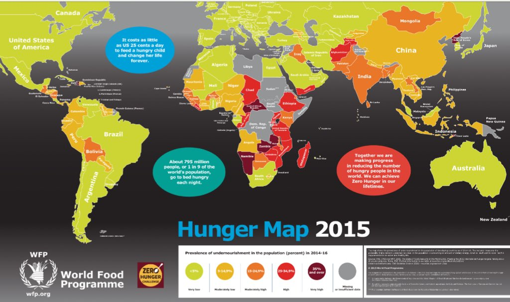 causes of world hunger essays Free essay: for the uninformed, the cause of world hunger might seem to be quite obvious, because the concept of hunger is ostensibly simple being hungry.
