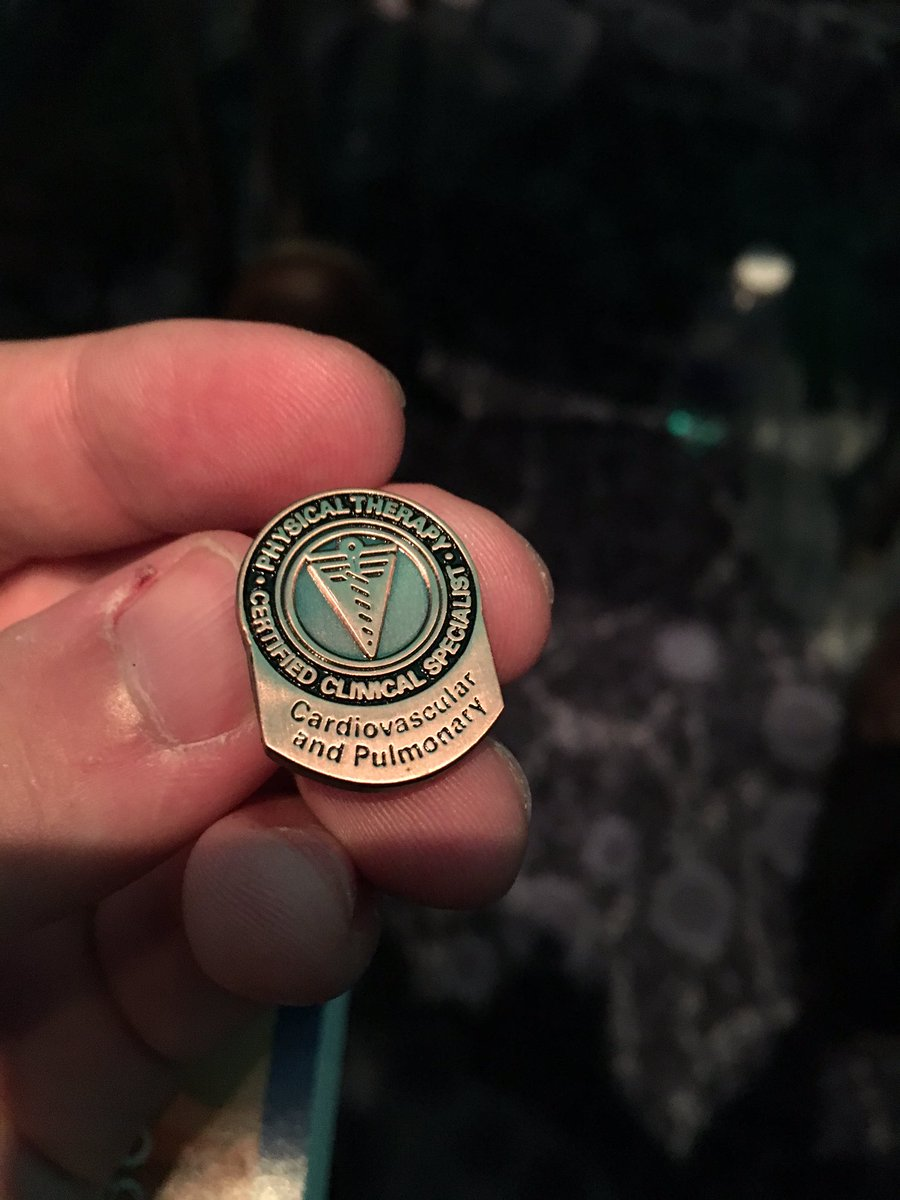 Most expensive brass pin ever but totally worth it!!!! #cvpPT #solvePT #APTACSM https://t.co/KXAA36H6u9