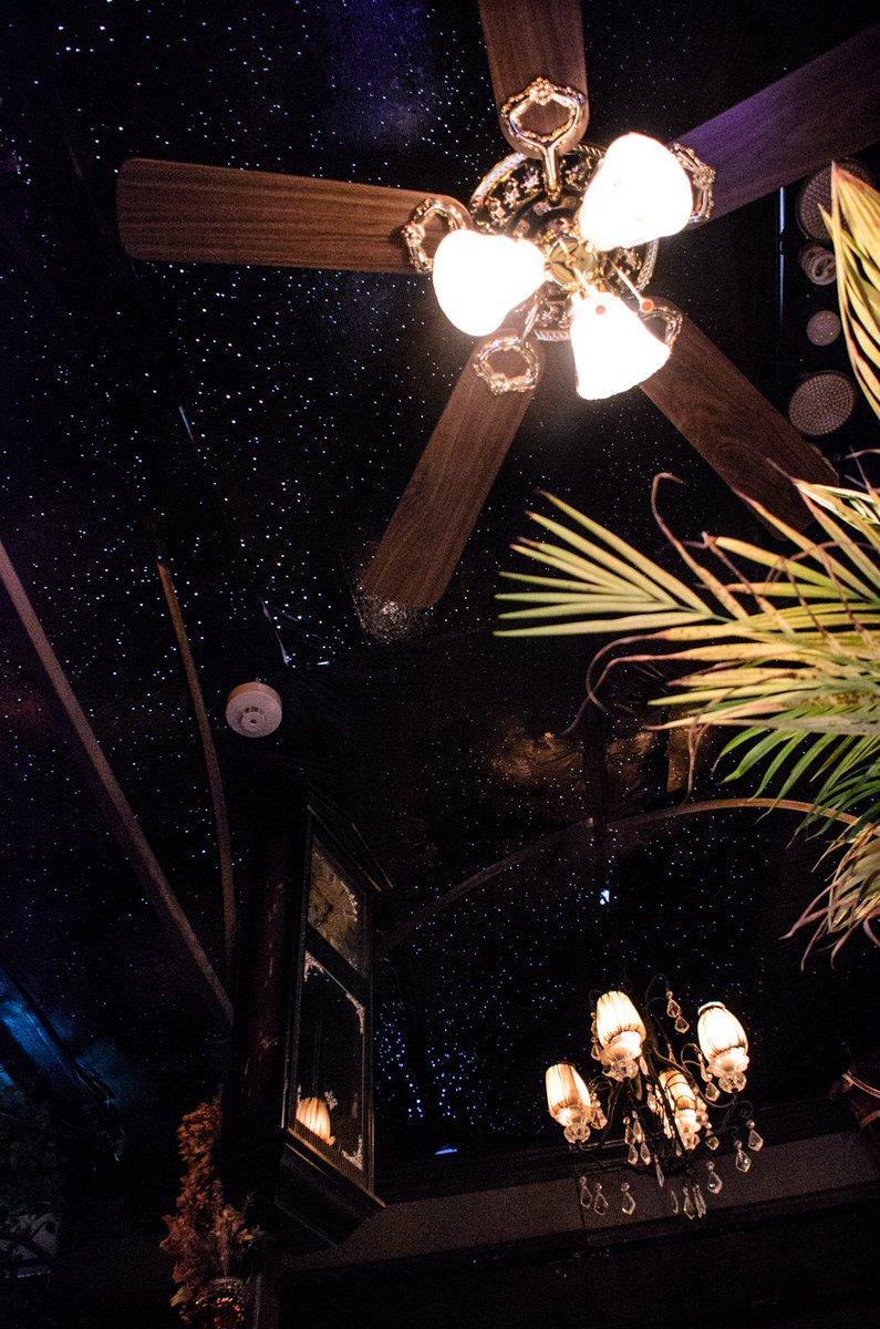 高円寺にある「エセルの中庭」という喫茶店、かなりオススメ 水槽で泳ぐ魚や天井いっぱいに広がる星空を眺めているだけで時間を忘れてしまう…不思議な場所に迷い込んでしまったかのような気分になります