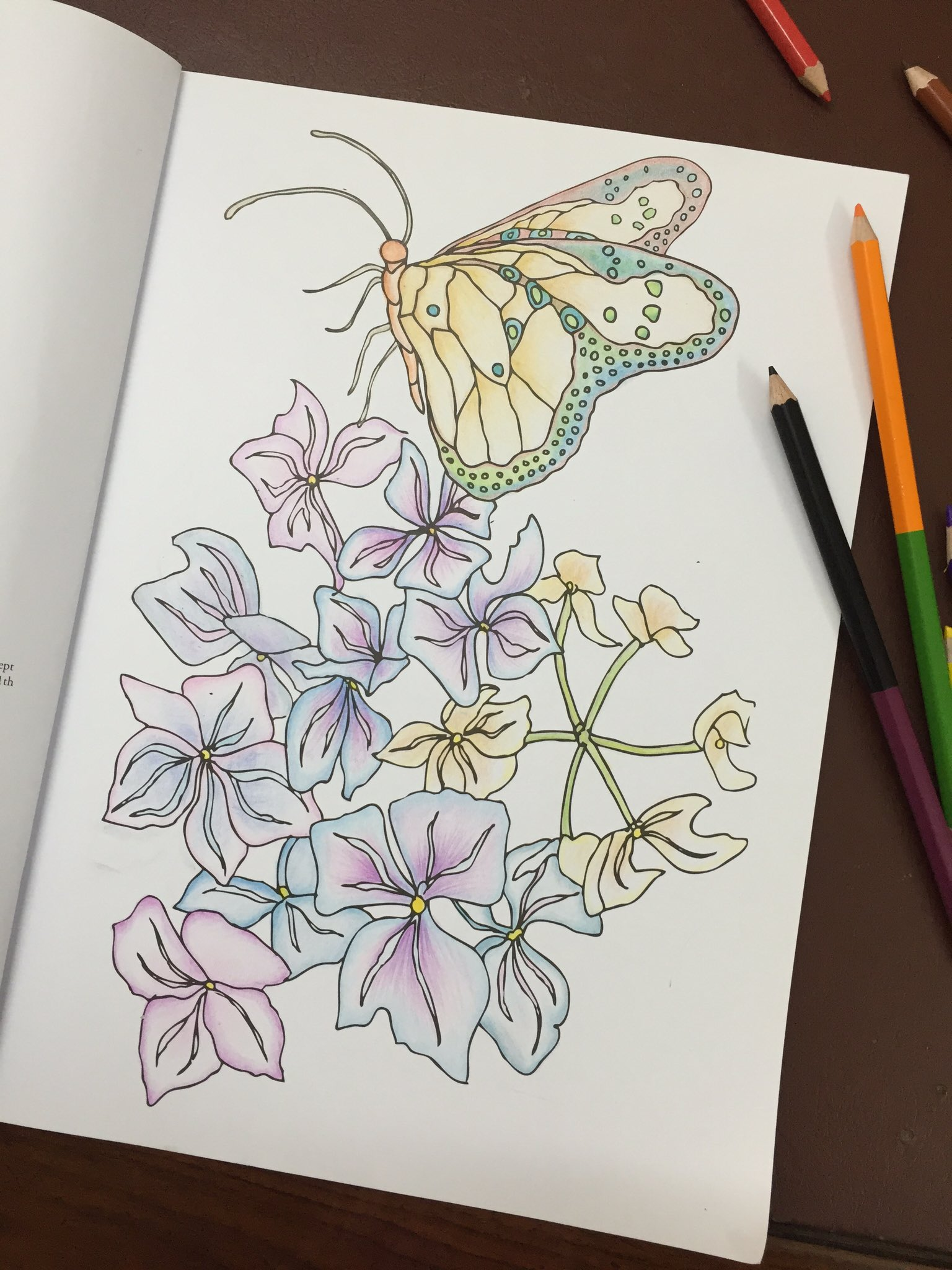 The Butterfly Coloring Book Madeline Goryl