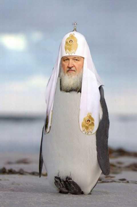 "Задержанному ""азовцу"" Краснову назначили залог в 20 млн грн, - нардеп Мосийчук - Цензор.НЕТ 6111"