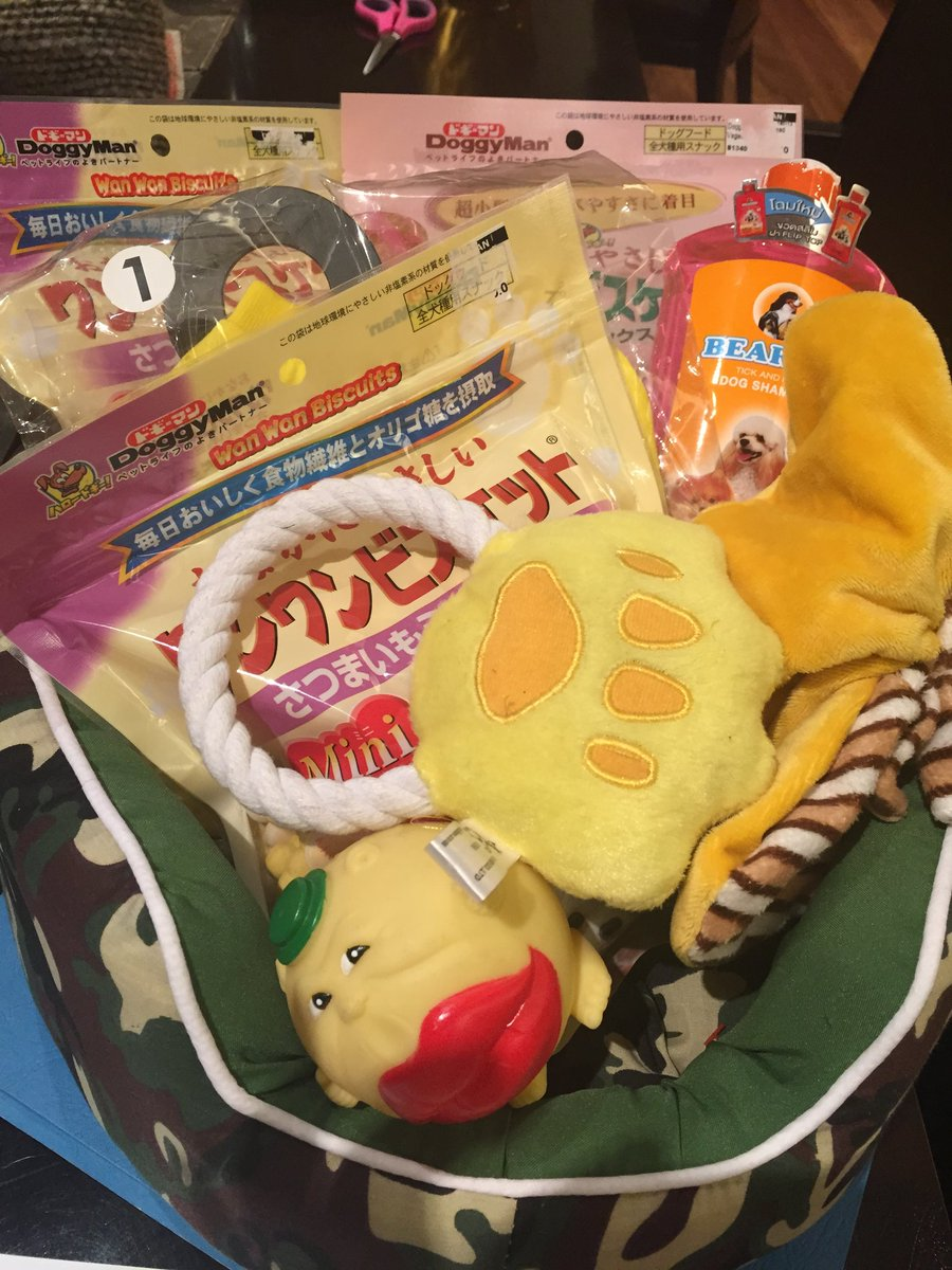 Korina Sanchez Roxas On Twitter What A Paradise Gift Basket For My New Puppy Burger From Ninong Chuck Gomez Doors Shampoo Toys Clothes Thank You Https T Co Olenraozr7