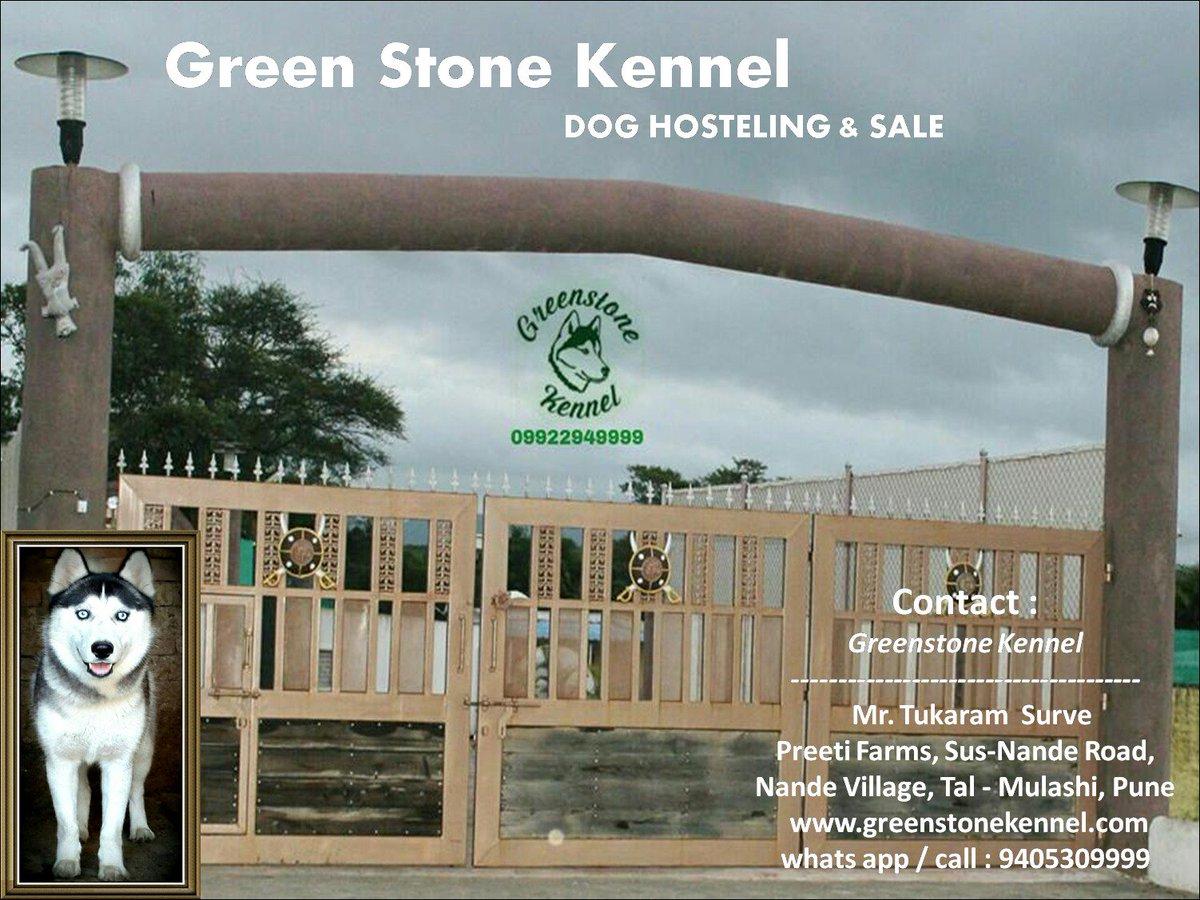 GreenStone Kennel on Twitter: