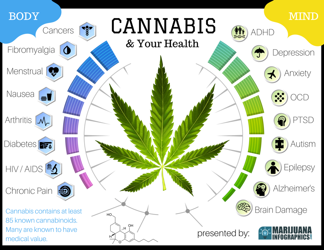 marijuana damages the mind and body essay Marijuana persuasive essay sample legalizing marijuana would benefit society in many policy was quoted saying, smoked marijuana damages the brain, heart, lungs, and immune system relaxes the body and the mind, and does the exact opposite to the body than anxiety entails.