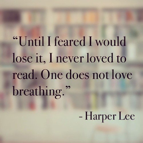 Today we lost a beautiful writer. RIP Harper Lee. https://t.co/aA0SgyV0j1