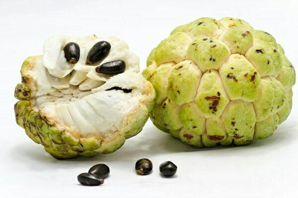 thai fruits, custard apple