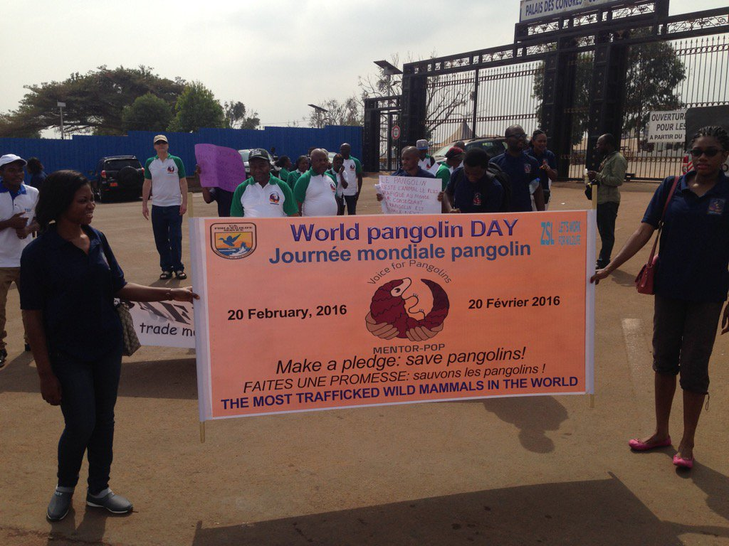World Pangolin Day demonstrators in Cameroon