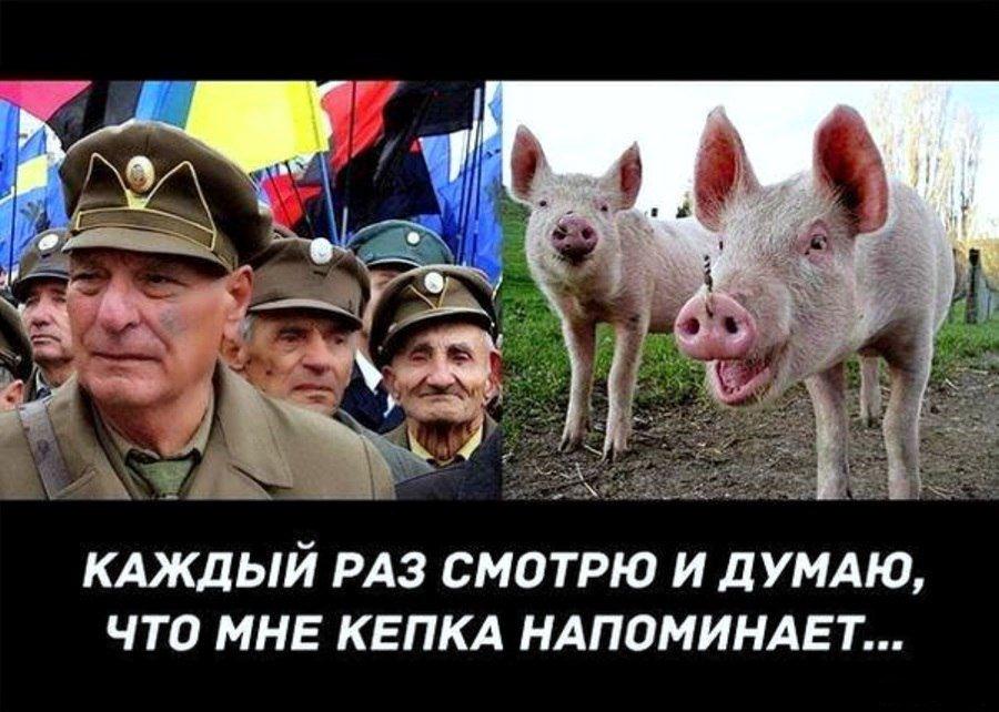 Очень смешные картинки про украину