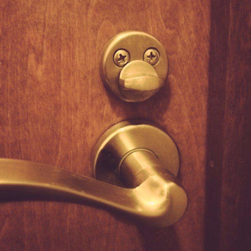 """以前、トイレのこいつはアヒルではないかと気になってる、とのツイートをしたが、最近はこの""""空に憧れるウサギ""""のことも気になってる。 pic.twitter.com/payuTS8tsU"""