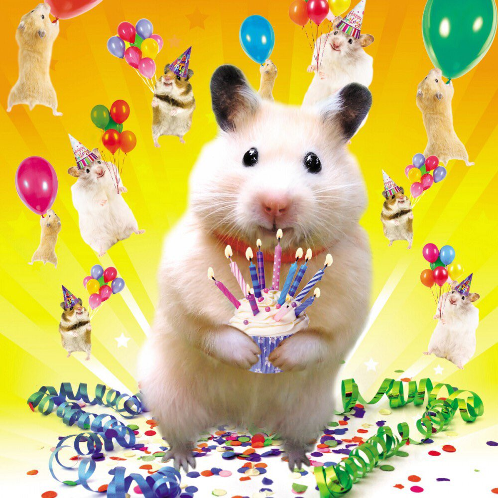 Картинки хомяки с днем рождения