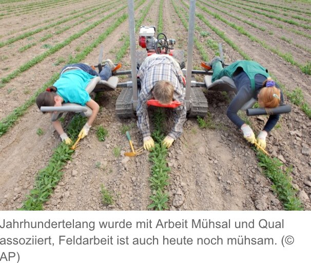 人とロボットが一体で農業と聞くとドイツ農場のこの光景を思い出してしまう。 腰が楽だとは言うけれど… https://t.co/jJ2TCLtUAM https://t.co/pWvw9pgvlE
