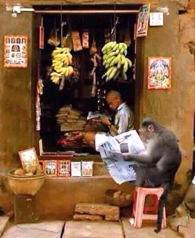 The literacy rate in Kerala has crossed 100% https://t.co/IphO50IhcY