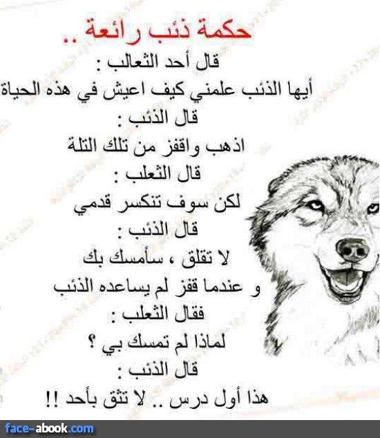 HASSAN Gjhg (@hassan_gjhg) | Twitter