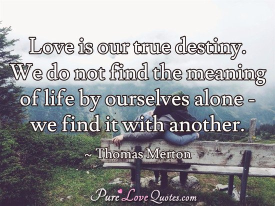 Pure Love Quotes On Twitter Love Is Our True Destiny We Do Not