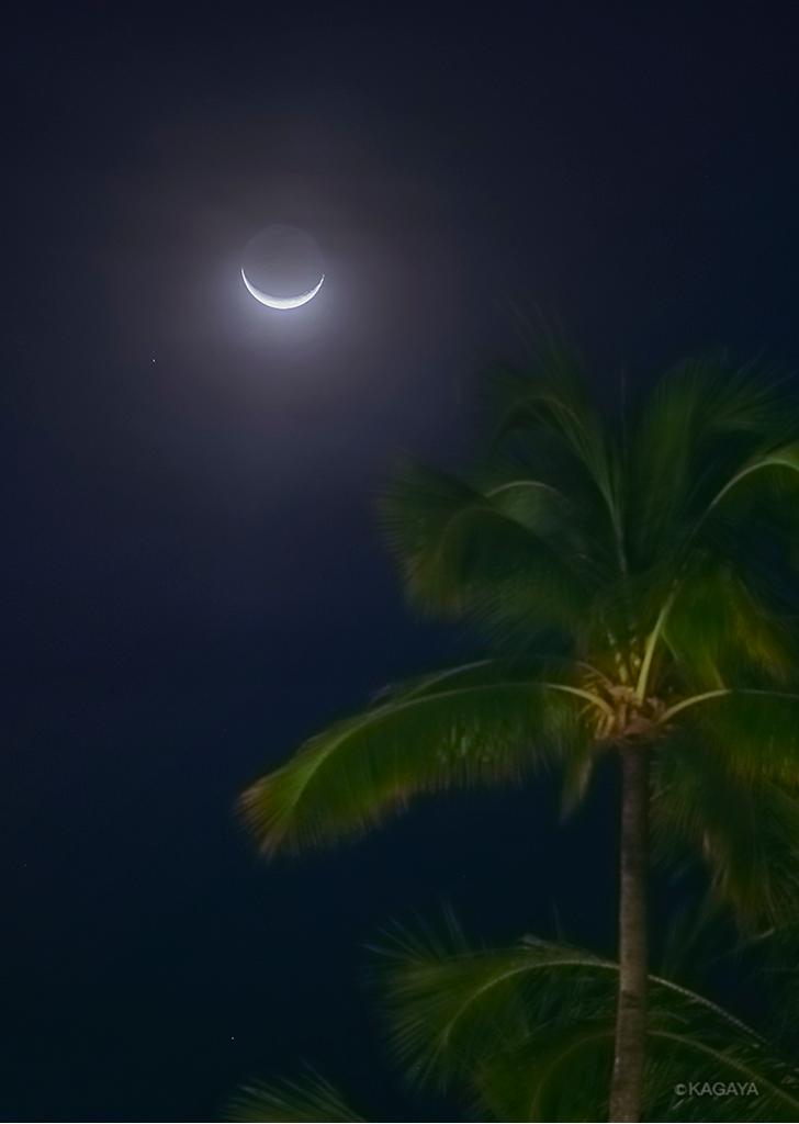バリ島の月。(本日未明に撮影) pic.twitter.com/L1pMtheRae