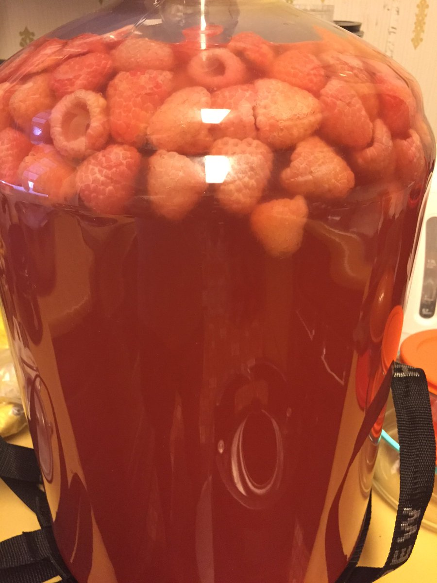 Raspberry Berliner getting kegged for the @stlhops 8th anniversary party #helluvaparty #forthedoggies 🍻