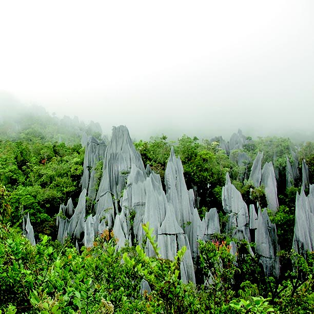 #mountainmonday you might think this is #Madagascar but #Malaysia has its own #pinnacles #mulu #borneo #mountains https://t.co/2OQQfvYGim