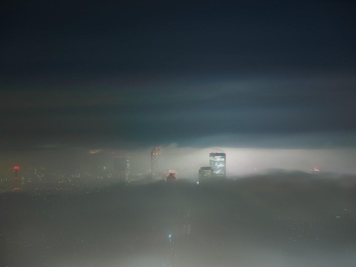 渋谷方面もヒカリエやセルリアンタワーの頭だけ見えていました。#霧の中 pic.twitter.com/BSx7KF4HPw
