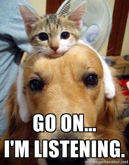 listening dog & cat