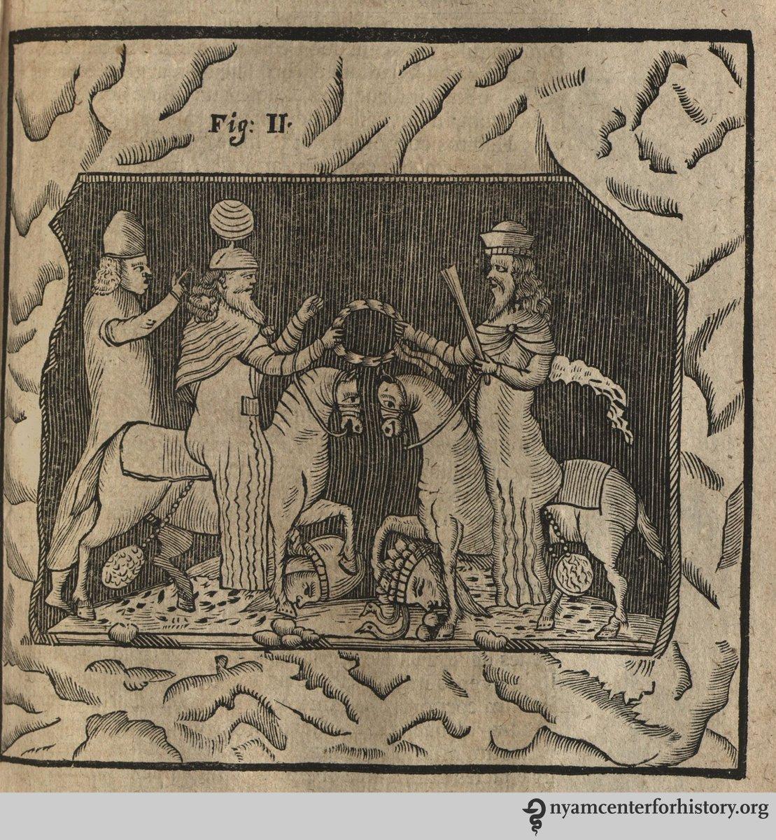 julius robert mayer seine krankheitsgeschichte und die geschichte seiner