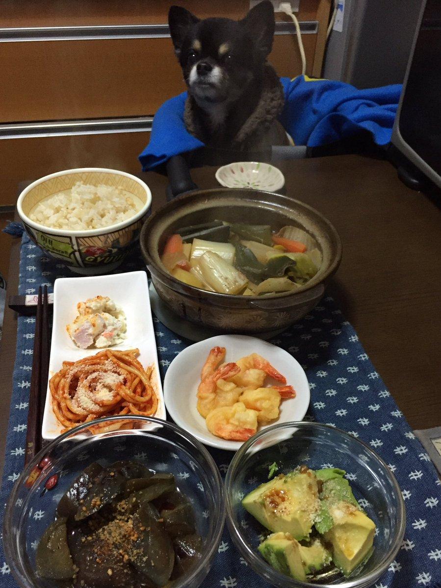 下仁田葱とじゃがいもを炊いたの、ナス煮浸しの花山椒ラー油ちょこっと、アボカドに柚子胡椒醤油オリーブオイルとパルメザンかけたの、その他いろいろ。余り食材ご飯にしては盛りだくさんに( ´ ▽ ` )
