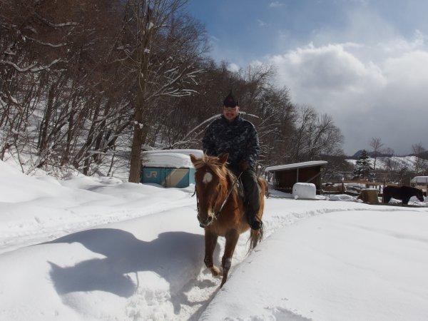 ド素人でも速歩の真似事ぐらいは出来るようになるから馬えらい。雪中の乗馬は夏場と全然違って面白かったです。雪の中を歩く分、動作が大きくなります。あとワンテンポ遅れて足が雪にめり込む感覚とか。