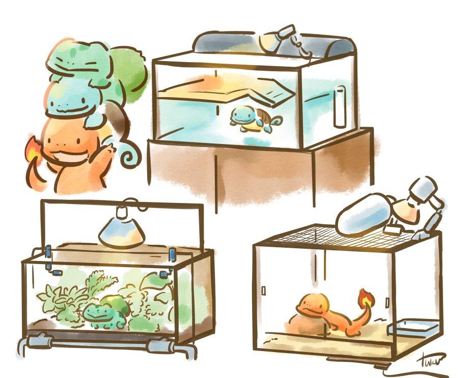 【妄想】初代御三家を現代の両生爬虫類飼育器具で飼育してみた  #ポケモン20周年 #Pokemon20 ポケモン20周年おめでとう!!! https://t.co/KYtB9FgcTo