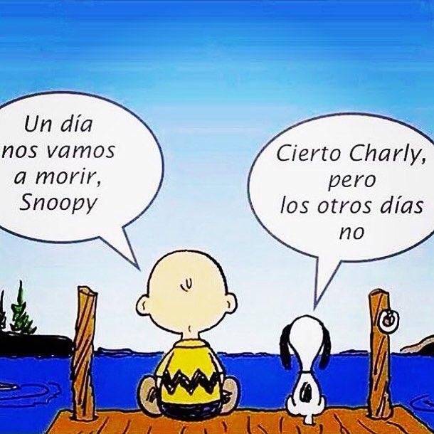 Roberto Galar Egüén On Twitter Frase Reflexion Snoopy