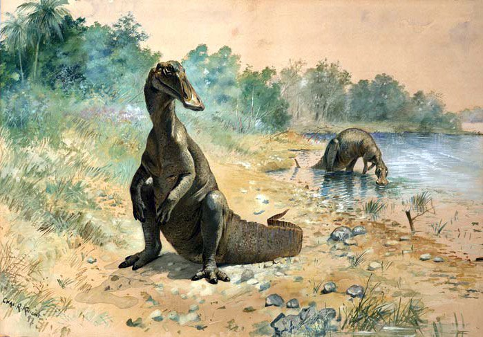 hadrosaurus as restored by charles r knight 1897 pictwittercommn8it5ihaq