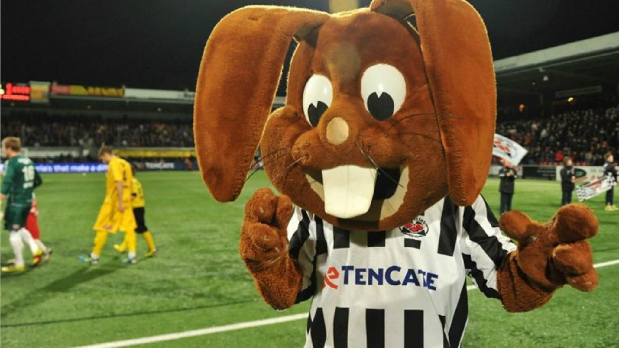 mascotte heracles almelo