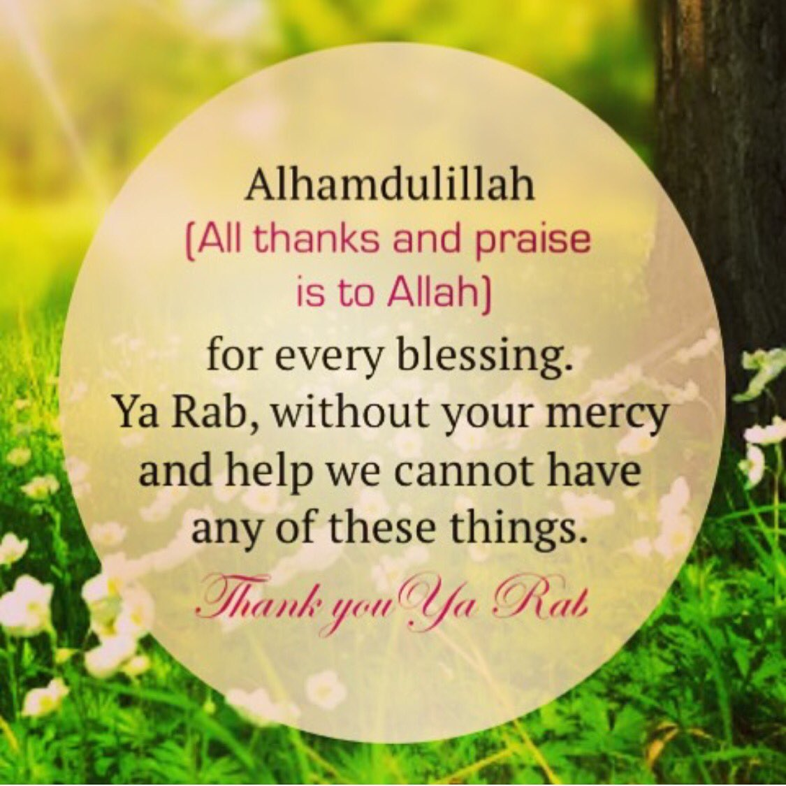 """Thank You Allah For Everything Quotes: OurAimjannah On Twitter: """"#Alhamdulillah #shukr #blessings"""