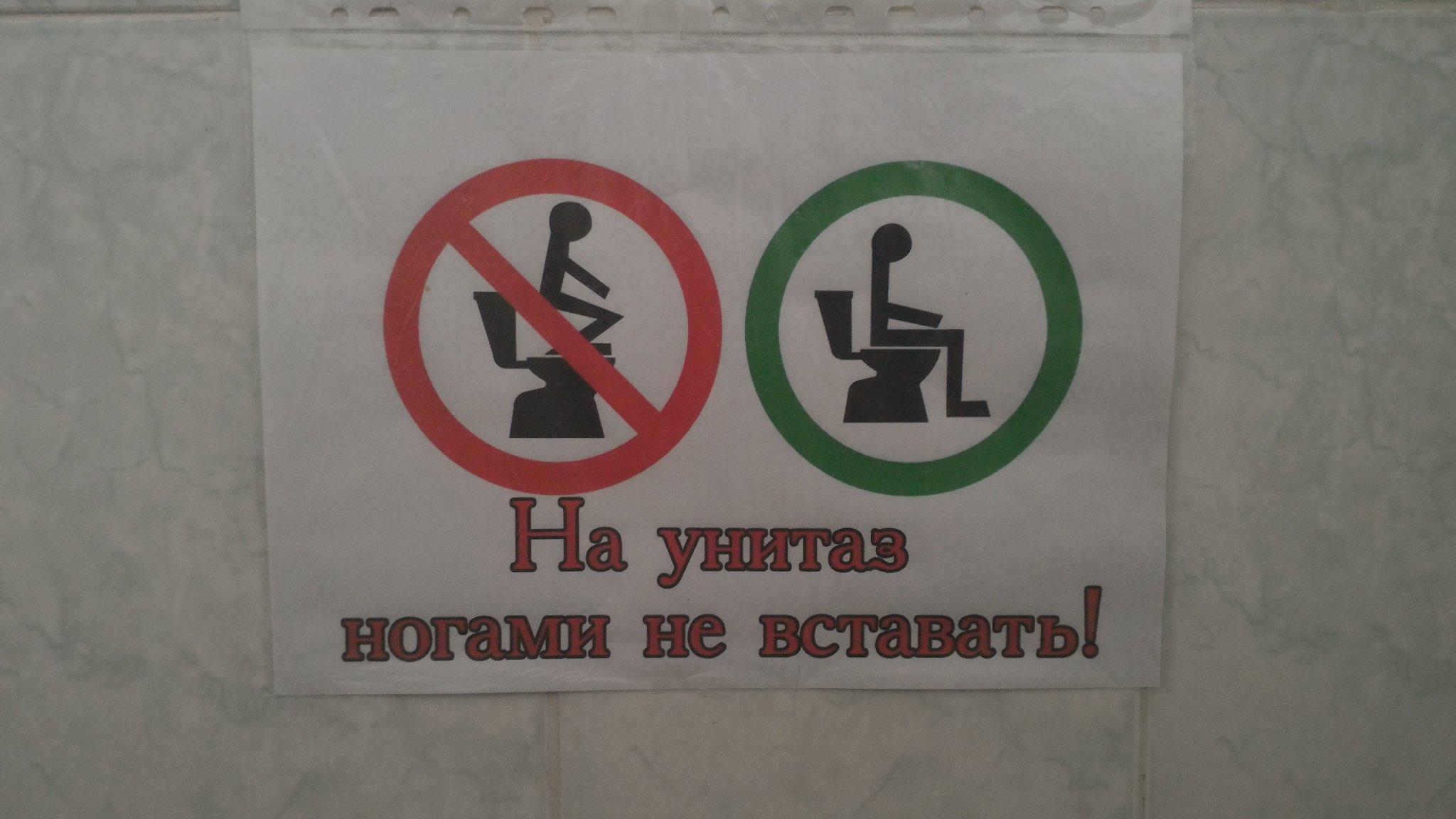 Дню, прикольные картинки как пользоваться туалетом