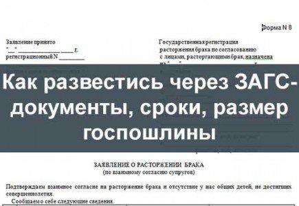 документы для развода загс новокуйбышевск