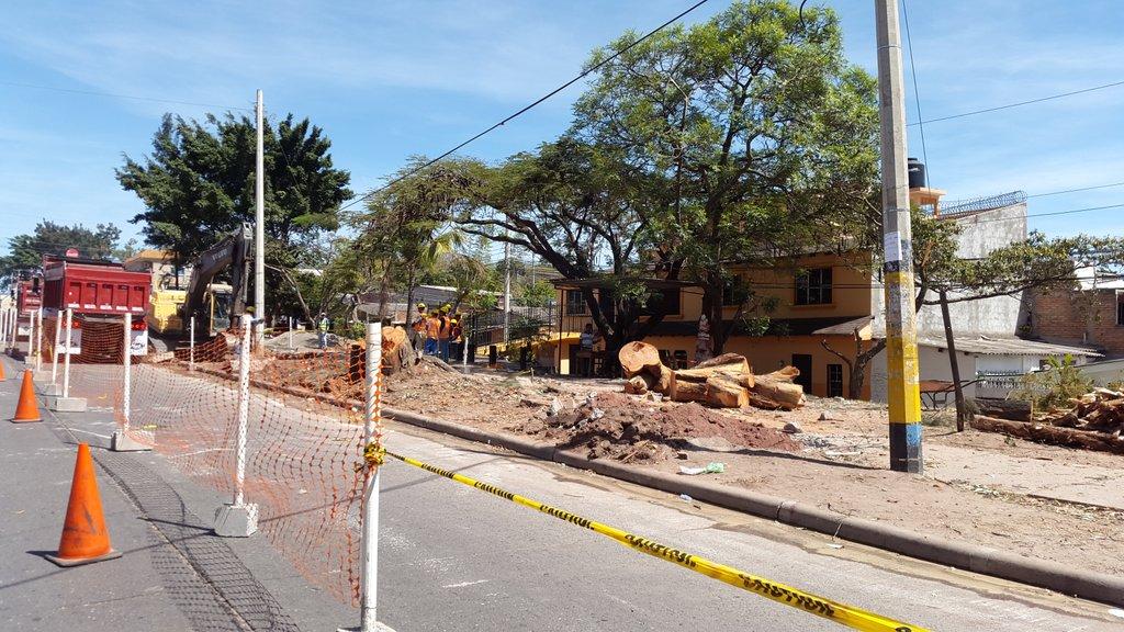 Unconcevible que en tiempos del cambio climático la Alcaldía esté cortando cuanto árbol encuentre en su camino! https://t.co/CNPmig9wma