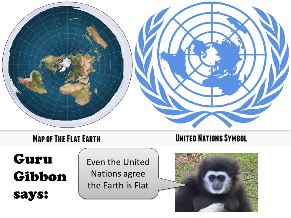 Image result for united nations logo flat earth