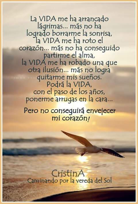 Miguel Ballesta Ccg Twitterissä La Vida Siempre Es Bella No Te